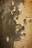 抽象五颜六色的水泥墙壁纹理和背景 免版税库存图片