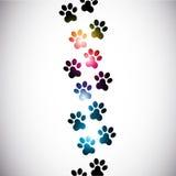 抽象五颜六色的爪子打印 库存照片