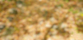 抽象五颜六色的背景,绿色闪烁葡萄酒点燃背景 库存照片
