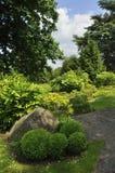 抽象修剪的花园或karikomi 免版税库存图片