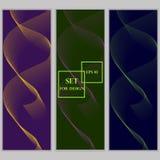 抽象光滑的细线 集合 设计您 库存照片