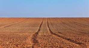 抽象农业 库存图片