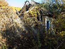 抽象农村被忘记的被毁坏的房子墙纸背景 库存图片