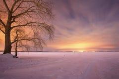抽象分数维图象晚上冬天 小雪 冬天光 库存图片