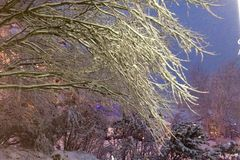 抽象分数维图象晚上冬天 免版税库存图片