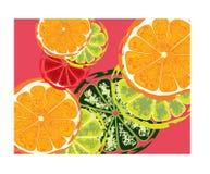 抽象切片柠檬酸果子 皇族释放例证