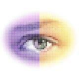 抽象半音眼睛 库存图片