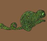 抽象变色蜥蜴传染媒介例证 库存照片