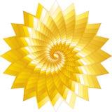 抽象同心星形 向量例证