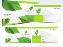 抽象名片绿色叶子 库存图片