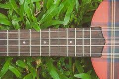 抽象图象关闭乐器在绿草的尤克里里琴吉他在葡萄酒样式 免版税库存图片