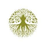 抽象圆的树商标 免版税图库摄影