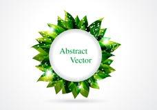 抽象圈子绿色叶子 免版税图库摄影