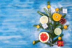抽象圣诞树食物背景用葡萄柚,普通话,柠檬,石灰,金桔 图库摄影