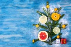 抽象圣诞树食物背景用葡萄柚,普通话,柠檬,石灰,金桔 库存图片
