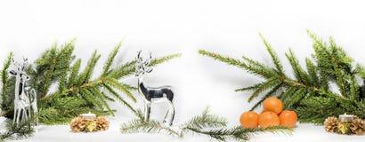 抽象圣诞节构成 抽象背景蓝色开花雪花向量冬天 库存图片