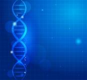 抽象基因链子 向量例证
