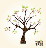 抽象夏天结构树 免版税库存图片