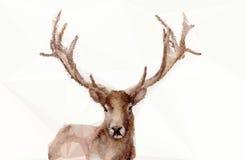 抽象多角形鹿 免版税库存图片