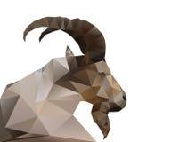 抽象山羊 免版税图库摄影