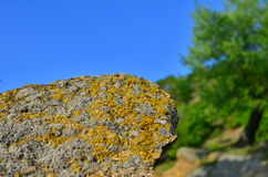 抽象岩石 免版税图库摄影