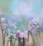 抽象开花的葱绘画 图库摄影