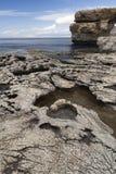抽象形状:一些奇怪地质结构海岸线惊人的细节在马耳他 免版税库存图片
