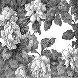 26抽象手拉的花卉样式上升了,葡萄酒 免版税库存图片