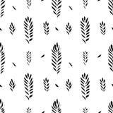 抽象无缝的手拉的样式 与植物的主题的现代难看的东西纹理 单色刷子被绘的背景 免版税库存图片