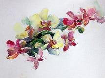 抽象明亮的色的装饰背景 手工制造花卉的样式 兰花美丽的嫩浪漫花束开花,疯狂 图库摄影