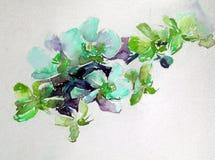 抽象明亮的色的装饰背景 手工制造花卉的样式 兰花美丽的嫩浪漫花束开花,疯狂 免版税库存图片
