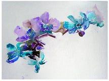 抽象明亮的色的装饰背景 手工制造花卉的样式 兰花美丽的嫩浪漫花束开花,疯狂 库存照片