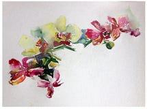 抽象明亮的色的装饰背景 手工制造花卉的样式 兰花美丽的嫩浪漫花束开花,疯狂 免版税库存照片
