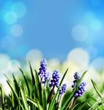 抽象春天复活节背景 免版税库存图片