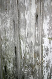 抽象木头 图库摄影