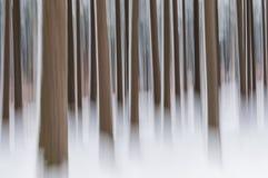 抽象森林在冬天 免版税库存图片