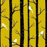 抽象森林背景 免版税库存照片