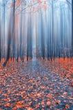 抽象森林 免版税库存图片