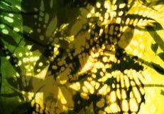 抽象植物群模式 免版税库存图片