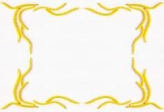 抽象榛树的春天花卉框架黄色花在白色背景的与文本的空间 免版税库存图片
