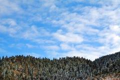 抽象横向冬天 库存图片