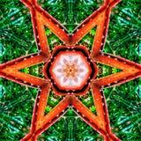 抽象橙色特征模式背景纹理 库存照片