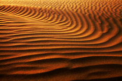 抽象沙漠模式 免版税库存照片