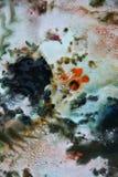 抽象混合油漆颜色和颜色 抽象独特的湿油漆背景 绘画斑点 免版税图库摄影