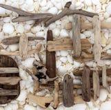 抽象漂流木头和贝壳背景 库存图片