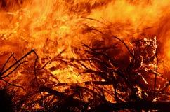 抽象灌木火背景狂放的火焰  免版税库存图片