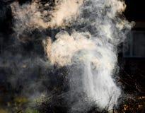 抽象烟 库存图片