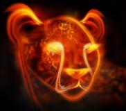 抽象猎豹 免版税库存图片