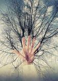 抽象环境概念照片拼贴画、树和手 免版税库存照片