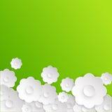抽象白皮书花 背景看板卡绿色风信花叶子百合Spring Valley 免版税图库摄影